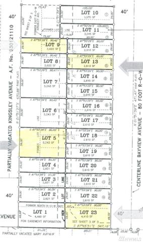 1668 Kingsley Ave, Blaine, WA 98230 (#1327916) :: Keller Williams Realty Greater Seattle