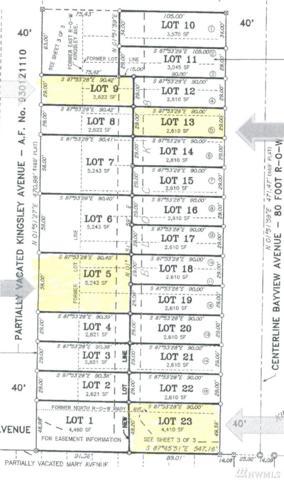 1668 Kingsley Ave, Blaine, WA 98230 (#1327921) :: Keller Williams Realty Greater Seattle