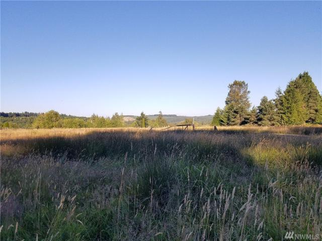 0 Westside Hwy, Castle Rock, WA 98611 (#1327931) :: Chris Cross Real Estate Group