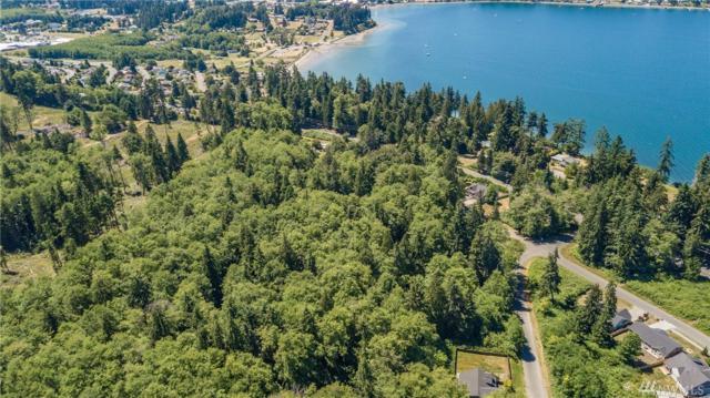0-XXXX Watkins Rd, Freeland, WA 98249 (#1328182) :: Keller Williams Realty Greater Seattle