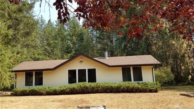 6651 NE Elfendahl Pass Rd, Belfair, WA 98528 (#1328898) :: Better Properties Lacey