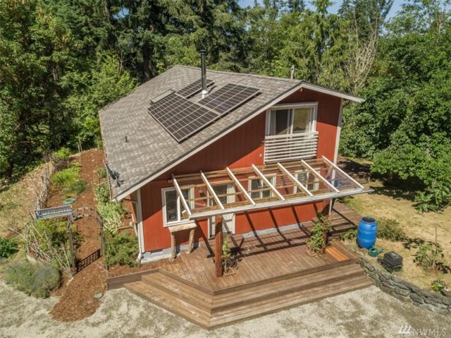 17148 Russian Hill Lane SE, Rainier, WA 98576 (#1328921) :: Homes on the Sound