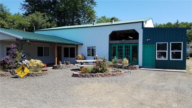 856 State Route 101, Chinook, WA 98614 (#1328922) :: Ben Kinney Real Estate Team