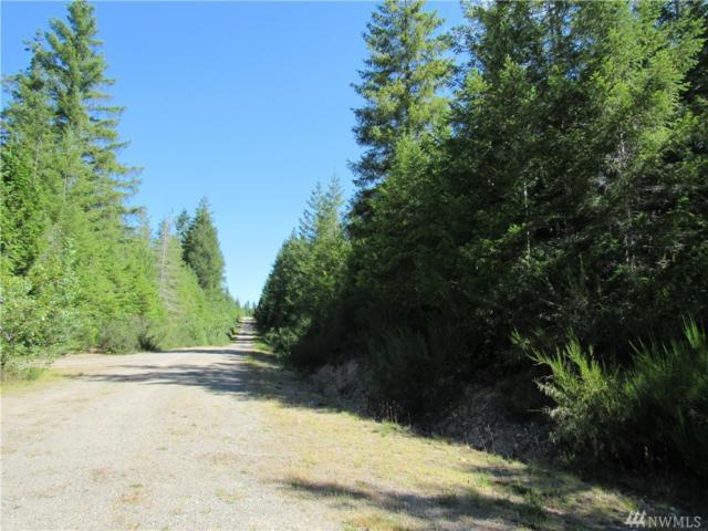 19-.5 acres W Ludvick Lake Dr, Seabeck, WA 98380 (#1328935) :: Icon Real Estate Group