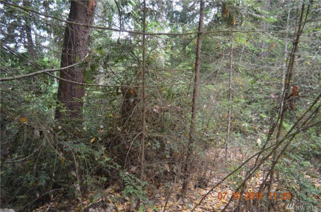 0 E Jenns Wy, Union, WA 98592 (#1329255) :: Keller Williams Realty Greater Seattle