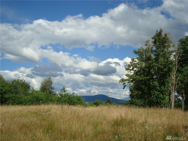 8 Sky Country Rd, Toutle, WA 98649 (#1329319) :: Keller Williams Everett