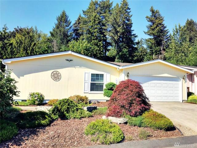 2239 E Grey Sea Eagle Lane SW, Tumwater, WA 98512 (#1329617) :: Northwest Home Team Realty, LLC