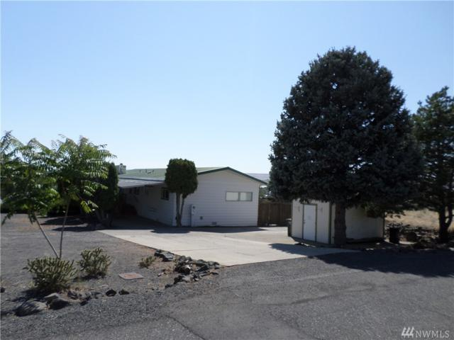 323 Scenic Dr, Soap Lake, WA 98851 (#1330079) :: Real Estate Solutions Group