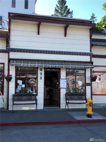 623 S 1st St, La Conner, WA 98257 (#1330775) :: Homes on the Sound