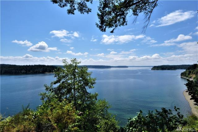 4715 Tipperary Dr SW, Longbranch, WA 98351 (#1330868) :: Homes on the Sound
