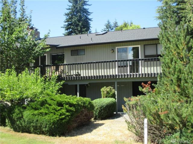 133 Hogans Vista, Sequim, WA 98382 (#1330954) :: Kimberly Gartland Group