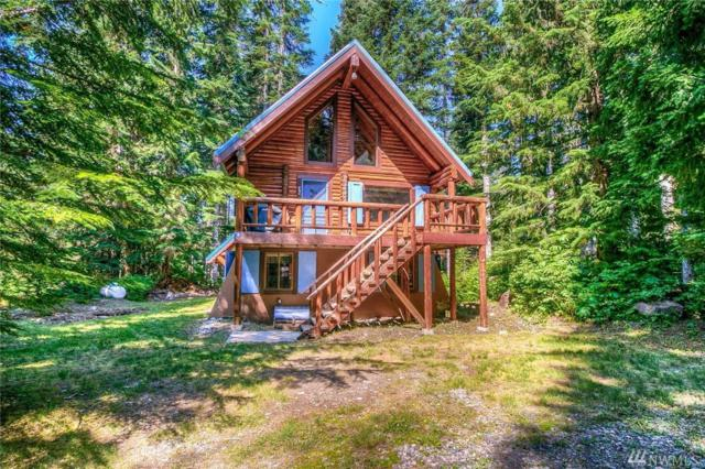 38 Gold Creek Lane, Snoqualmie Pass, WA 98068 (#1331181) :: Homes on the Sound