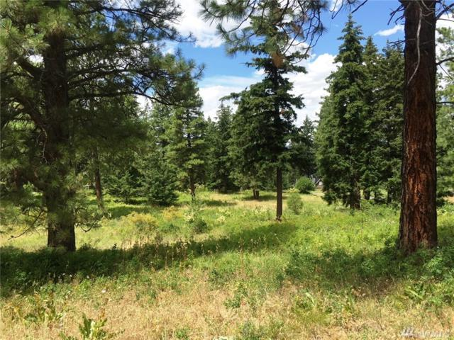 270 Anderson Lane, Cle Elum, WA 98922 (#1331351) :: NW Home Experts