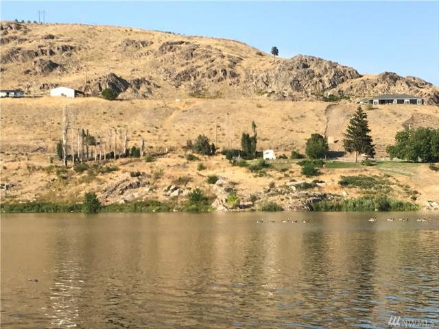 821 Riverside Dr, Pateros, WA 98846 (#1331499) :: Chris Cross Real Estate Group