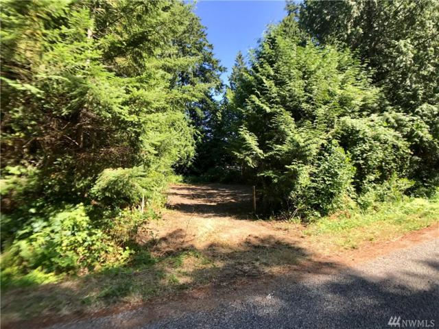 159 Kennedy  Lot 7 Rd, Point Roberts, WA 98281 (#1331661) :: Canterwood Real Estate Team