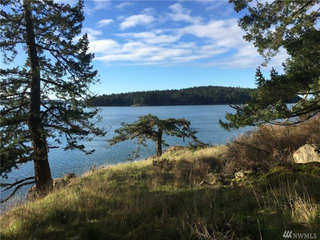 0-XX Spring Point Rd, Orcas Island, WA 98243 (#1331675) :: Homes on the Sound