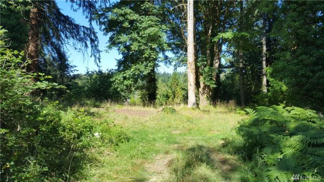16301 91st Ave SW, Vashon, WA 98070 (#1331752) :: Priority One Realty Inc.