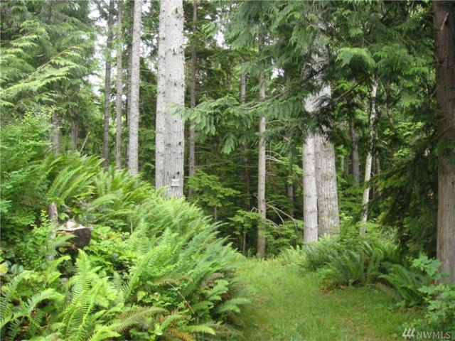 9999 Sea Home Rd, Quilcene, WA 98376 (#1331901) :: Homes on the Sound