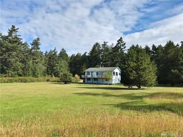 834 Treeline Dr, Friday Harbor, WA 98250 (#1332275) :: Homes on the Sound