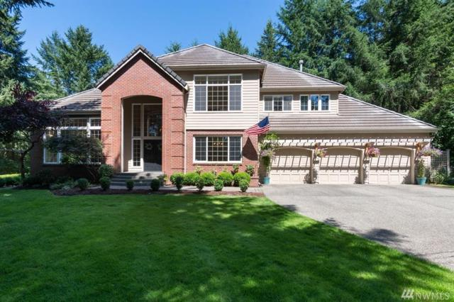703 33rd Av Ct NW, Gig Harbor, WA 98335 (#1332714) :: Brandon Nelson Partners