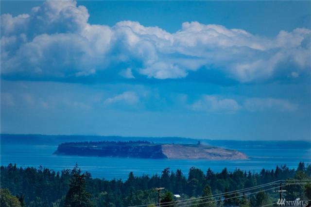 51 Opal Lane, Sequim, WA 98382 (#1332871) :: Keller Williams Realty Greater Seattle