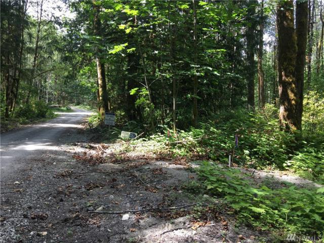 633-XX Cascade Way, Marblemount, WA 98267 (#1333125) :: Homes on the Sound
