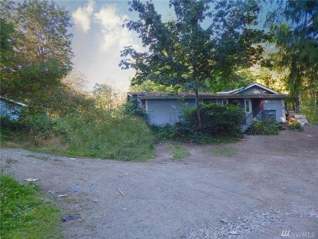 1013 Loganberry Lane, Camano Island, WA 98282 (#1333198) :: Canterwood Real Estate Team