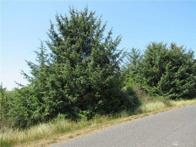 122 Ocean Blvd, Ocean Shores, WA 98569 (#1333432) :: Homes on the Sound
