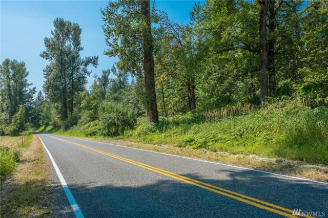 0 Mt Baker Hwy, Deming, WA 98244 (#1333749) :: Homes on the Sound