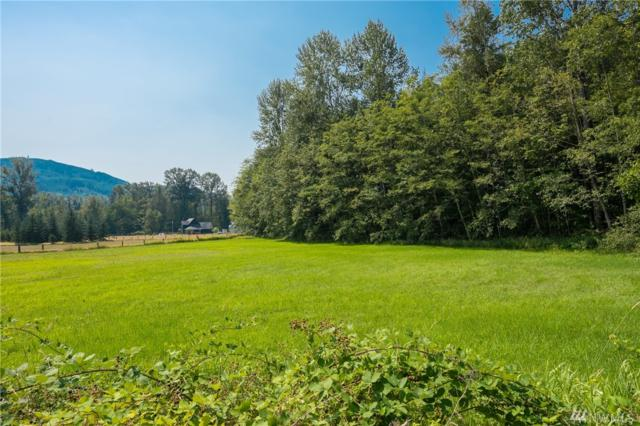 0 Mt Baker Hwy, Deming, WA 98244 (#1333750) :: Homes on the Sound
