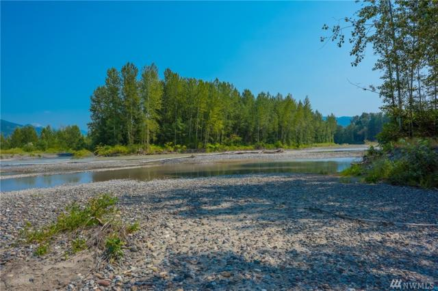 0 Martin Rd, Everson, WA 98276 (#1333752) :: Homes on the Sound