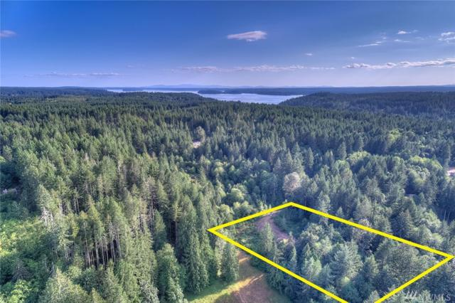 12606 176th Av Ct NW, Gig Harbor, WA 98329 (#1333957) :: Homes on the Sound