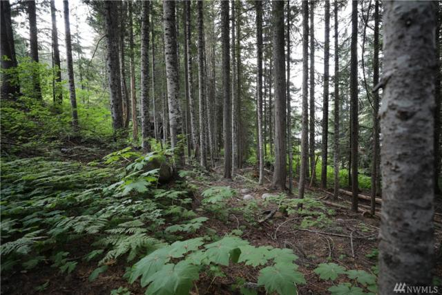 41-lot 41 Snoqualmie Dr, Snoqualmie Pass, WA 98068 (#1334053) :: The Vija Group - Keller Williams Realty