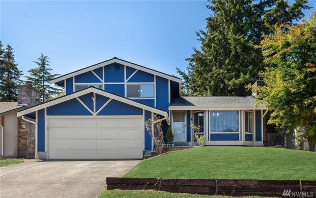 8445 5th Ave SW, Seattle, WA 98106 (#1334122) :: Keller Williams - Shook Home Group