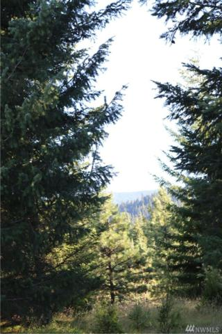 160 Silver Queen Lane, Cle Elum, WA 98922 (#1334126) :: Homes on the Sound