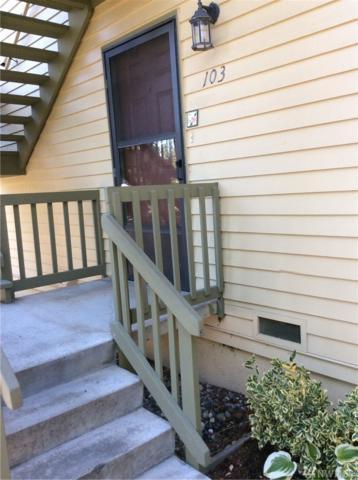 310 S 11th St #103, Mount Vernon, WA 98274 (#1334158) :: Beach & Blvd Real Estate Group