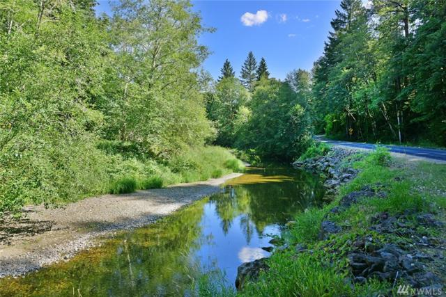 0 NE Tahuya River Rd, Tahuya, WA 98588 (#1334564) :: Homes on the Sound