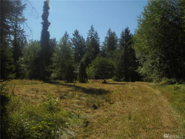 0 Center Rd, Quilcene, WA 98376 (#1334662) :: Real Estate Solutions Group