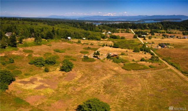 4184 Sunnyhill Lane, Lummi Island, WA 98262 (#1334954) :: Kimberly Gartland Group