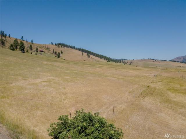 0 Lot 21A & 21B Low Rd, Cle Elum, WA 98922 (#1334962) :: Homes on the Sound