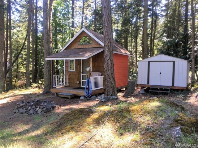 1060 Chinook Wy, Center Island, WA 98221 (#1335040) :: Ben Kinney Real Estate Team