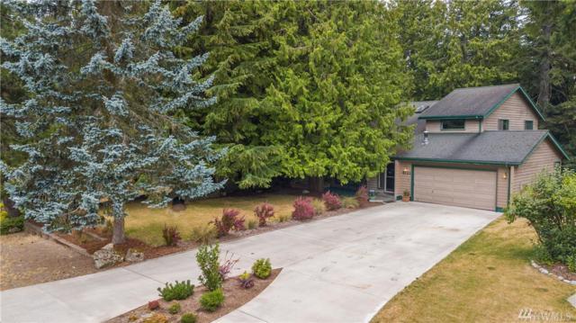 4121 Ridgewood Ave, Bellingham, WA 98229 (#1335128) :: Homes on the Sound