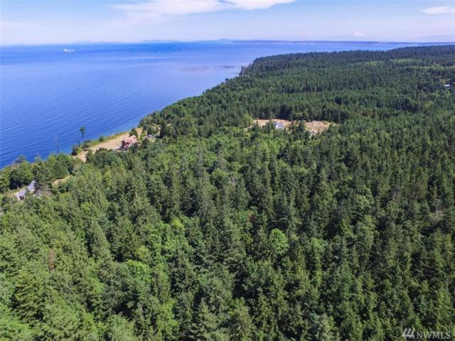 9999 Middlepoint Rd, Port Townsend, WA 98368 (#1335147) :: Icon Real Estate Group