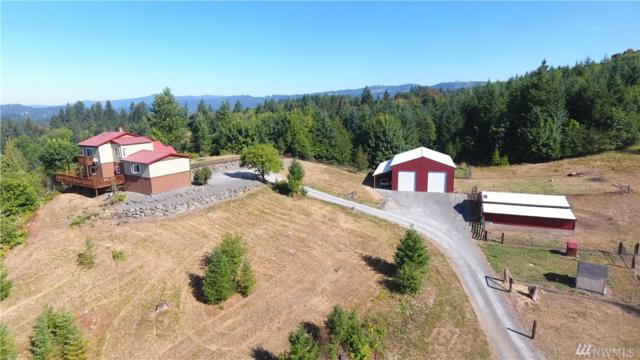 37406 NE Gerber Rd, Yacolt, WA 98675 (#1335360) :: Homes on the Sound
