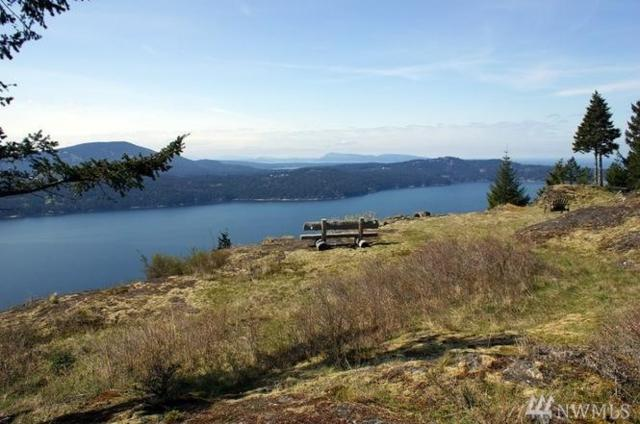 626 Shadow Rd, Orcas Island, WA 98245 (#1335794) :: Canterwood Real Estate Team