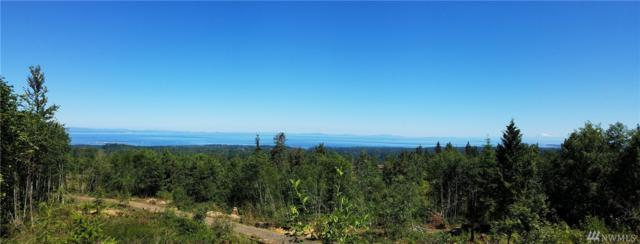 245 Scenic View Lane, Port Angeles, WA 98362 (#1336072) :: Carroll & Lions