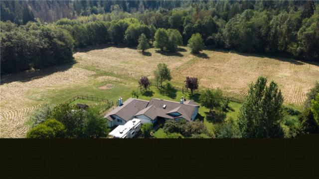 18607 Pioneer Wy E, Orting, WA 98360 (#1337280) :: Canterwood Real Estate Team