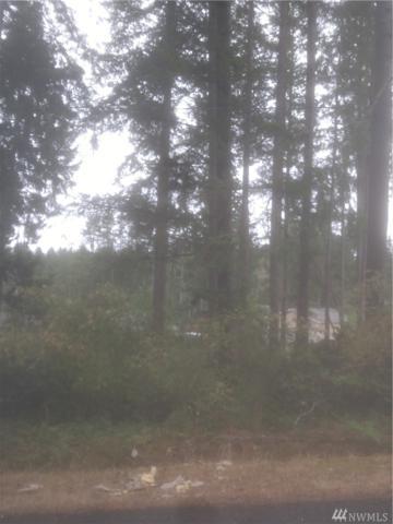 19420 24th St SW, Lakebay, WA 98349 (#1337388) :: Keller Williams - Shook Home Group