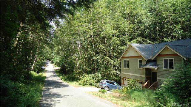 13 Pinto Creek Lane, Bellingham, WA 98229 (#1337928) :: Brandon Nelson Partners