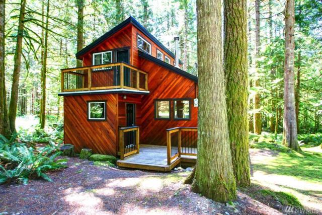 7442 Canyon View Dr, Glacier, WA 98244 (#1337958) :: Canterwood Real Estate Team